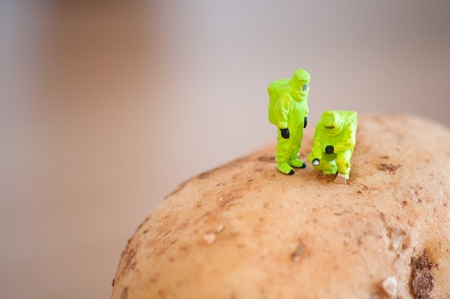 hazmat: Group of Researchers in protective suit inspecting a potato. Transgenic food concept