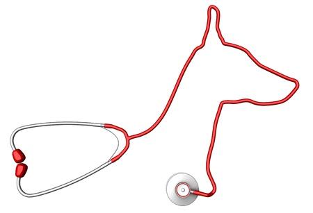 veterinarian symbol: Dog-a forma di stetoscopio. Pet concetto di assistenza sanitaria