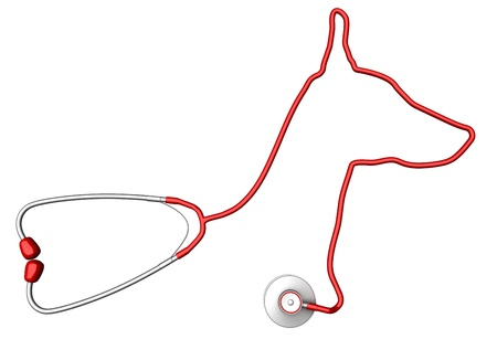 medical evaluation: Dog-shaped stethoscope. Pet health care concept Stock Photo