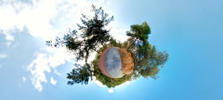 equirectangular: Little Planet forest panorama