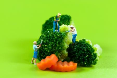 peasant: Figurine farmers harvesting broccoli