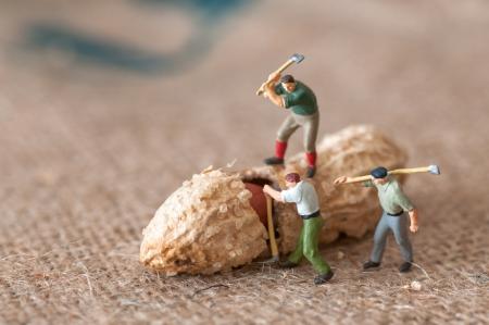 cacahuate: Figuras de juguete de leñadores con un cacahuete
