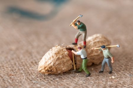 working: Toy figures of lumbermen with a peanut