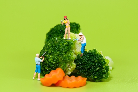 Figurine farmers harvesting giant broccoli Stock Photo - 18430003