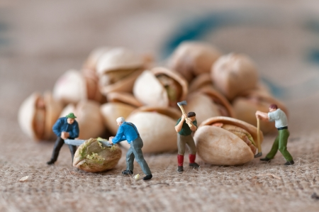miniature people: Toy figures of lumbermen with a peanut