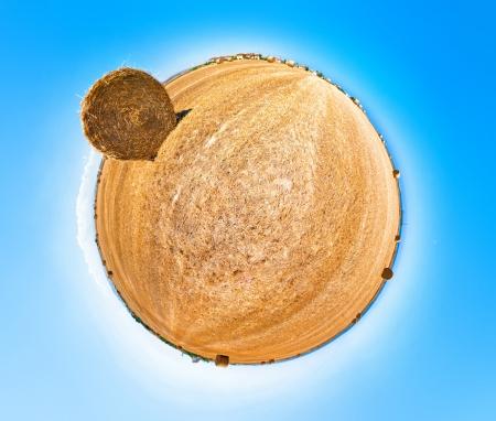 hay field: Campo di fieno. 360 di proiezione stereografica. Piccolo pianeta.