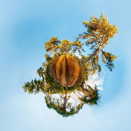 licenciatura: Planeta miniatura con el bosque de pinos. Proyección estereográfica.