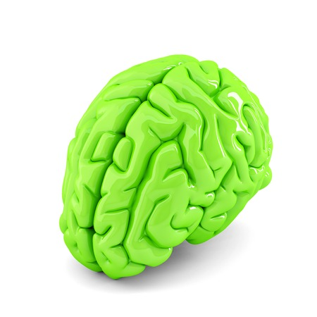 Green human brain close up. Isolate. Contains clipping path Stock Photo
