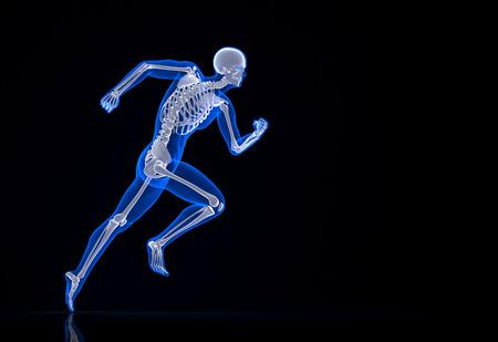 Lauf Skelett. Enthält Clipping-Pfad. Standard-Bild - 28219308