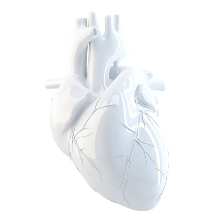 black heart: Human Heart. 3d render. Isolated over white, contains clipping path.