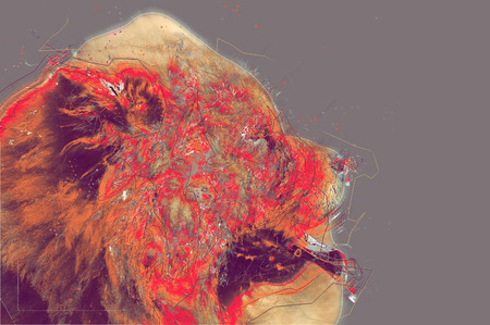 chow: Chow Chow dog portrait. Abstract artwork illustration Stock Photo
