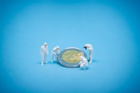 inspected: Two euro coins being inspected by specialist. Stock Photo