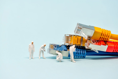 cat5: Technicians with multicolored network cables.