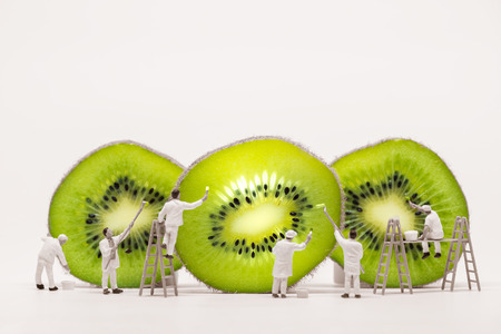 Miniature painters coloring Kiwi slices. Macro photo.
