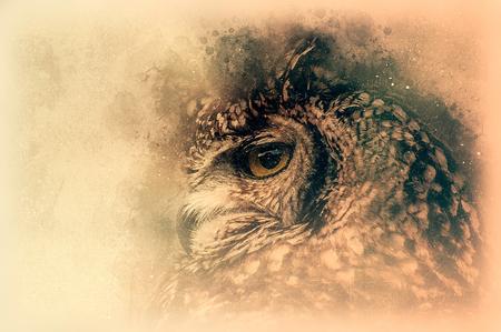 Die Bengal-Eagle-Owl-Skizze Digitale Abbildung Lizenzfreie Bilder