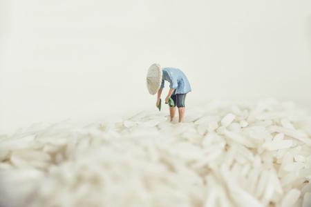 Asian farmer harvesting rice. Stock Photo