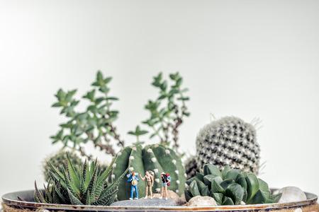 Miniature hikers along desert landscape.