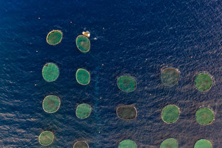 Overhead view of fish farms on the sea
