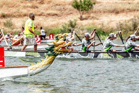 Teams compete in a dragon boat race Standard-Bild