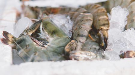 shrimp on local market  close-up shallow focus Archivio Fotografico