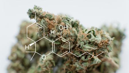 concert of medical marijuana treatment. THC  element diagram