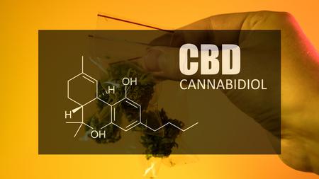 Chemical formula of Cannabidiol (CBD). Close-up