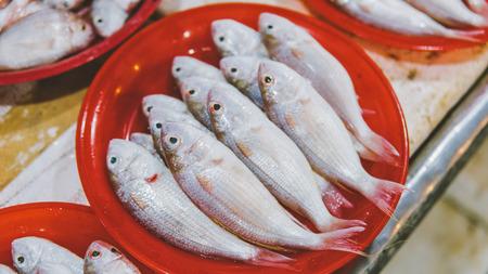 Thai Fish Markets close-up. Imagens