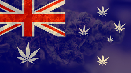 AUSTRALIA AS WORLD LEADER ON MARIHUAN EXPORT. Marijuana Export Mirage