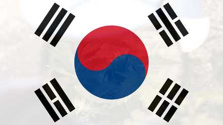 legalization of medical marijuana in South Korea Stockfoto