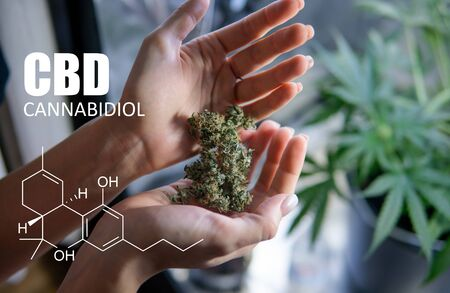 chemical formulas of elements THC CBD in marijuana medical strains