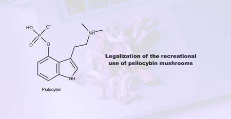 Legalization of the recreational use of psilocybin mushrooms, psilocybin and its effect on the human body