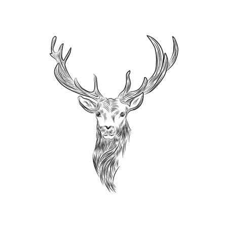 deer sketch vector graphics monochrome head with horns