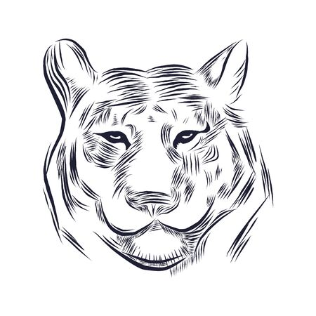line illustration of a tiger head, suitable as tattoo, team mascot, symbol for zoo or animal preservation center Stock Vector - 129707196