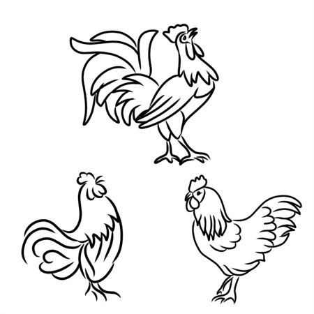 Hand drawn set chicken and roster icon, isolated on white background. Stock Illustratie