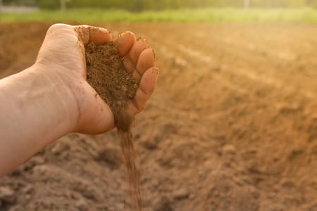 Soil in hand cultivated dirt. earth or  ground with nature background.  Imagens