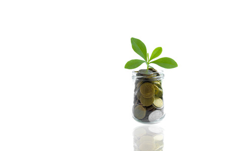 Coins and plant in bottle, Business investment saving concept. Coins in bottle on white background, Business investment concept Stock Photo
