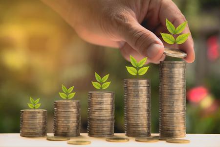 돈 개념을 저장 하 고 손을 돈을 퍼 팅 비즈니스를위한 성장 동전 스택