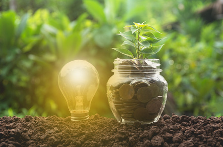 Energy saving light bulb and tree growing on stacks of coins on nature background. Stock Photo