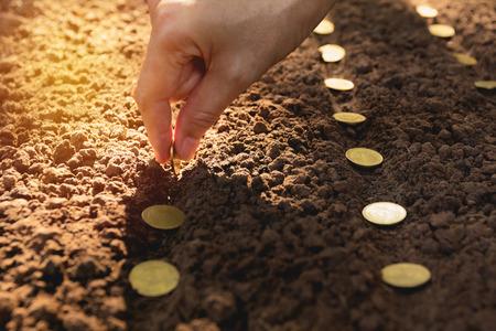 Concept de semis et d'épargne par la main de l'homme, semer des pièces de monnaie humaines dans le sol pour la croissance de l'argent.