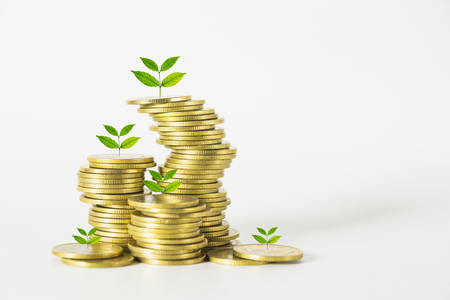 Saving money concept with money coin stack growing for business. financial and accounting concept. Stok Fotoğraf