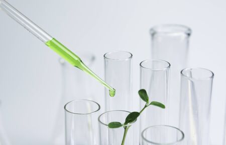 Researcher with glass laboratory chemical test tubes with liquid for analytical , medical, pharmaceutical and scientific research concept. Zdjęcie Seryjne