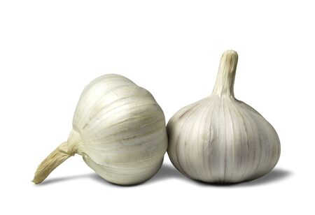 Fresh white garlic isolated on a white background. Food and healthy concept.