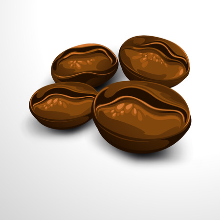 coffee bean. vector illustration.