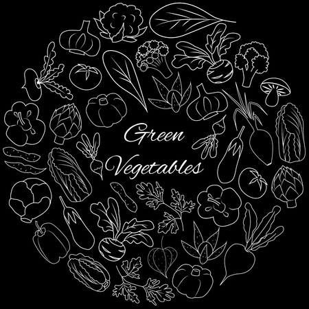 Vector Set with green fresh vegetables. Hand drawn Illustration