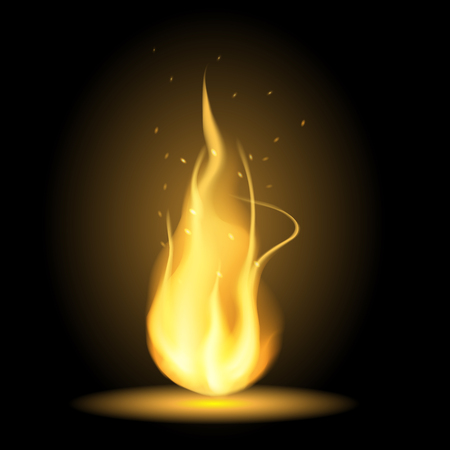 Realistic fire flames on black background Illustration