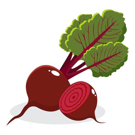 Betterave rouge avec des feuilles entières et coupé isolé sur fond blanc. Illustration vectorielle dessinés à la main