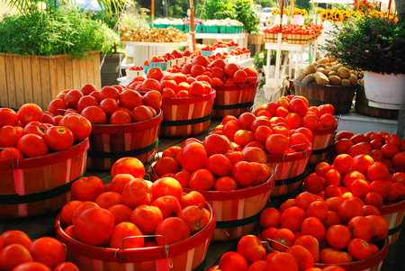 east end: Locally Grown Produce in the Hamptons, Long Island Stock Photo