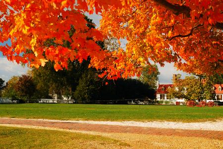 dwell house: Autumn Scene