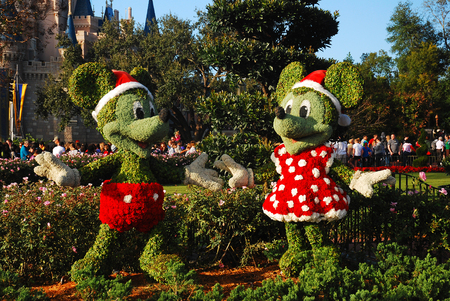 Mickey and Minnie in their Christmas Best, Walt Disney World Editorial