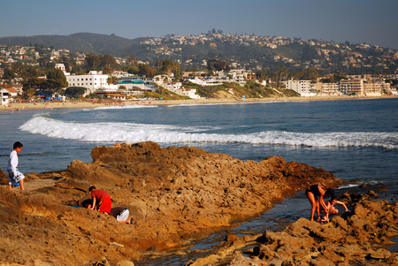 oc: Beach Goers Inspect the Tidal Pools at Laguna Beach, California
